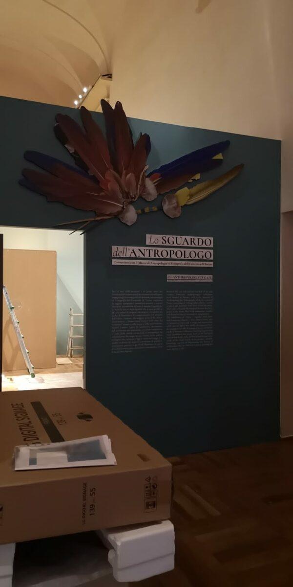 lo sguardo dell'antropologo museo egizio Torino