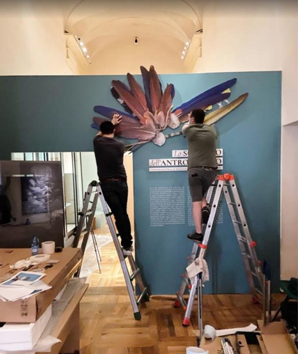 museo egizio torino lo sguardo dell'antropologo